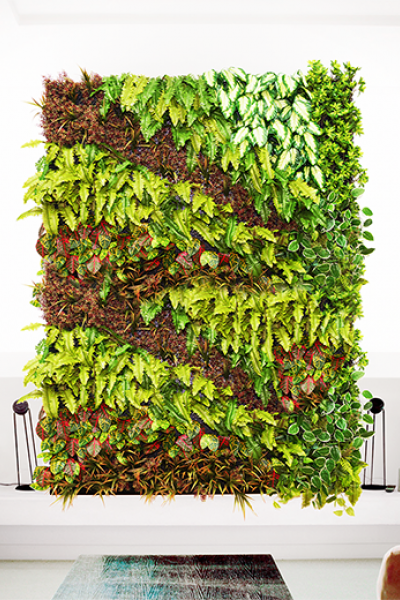 Babylon Green flexible wall solutions