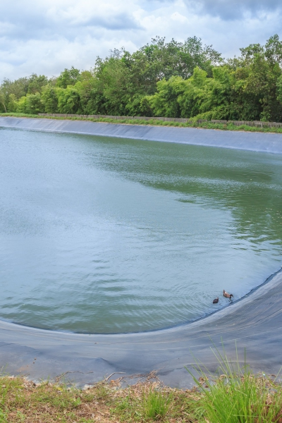 Pondliner large surface for large surfaces